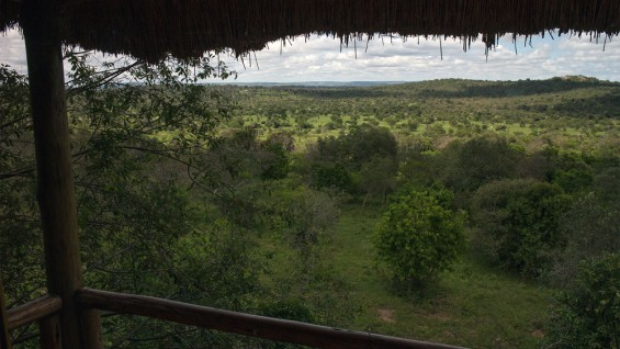 View Lake Mburo National Park Safari Lodge
