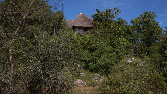 Mburo Safari Lodge